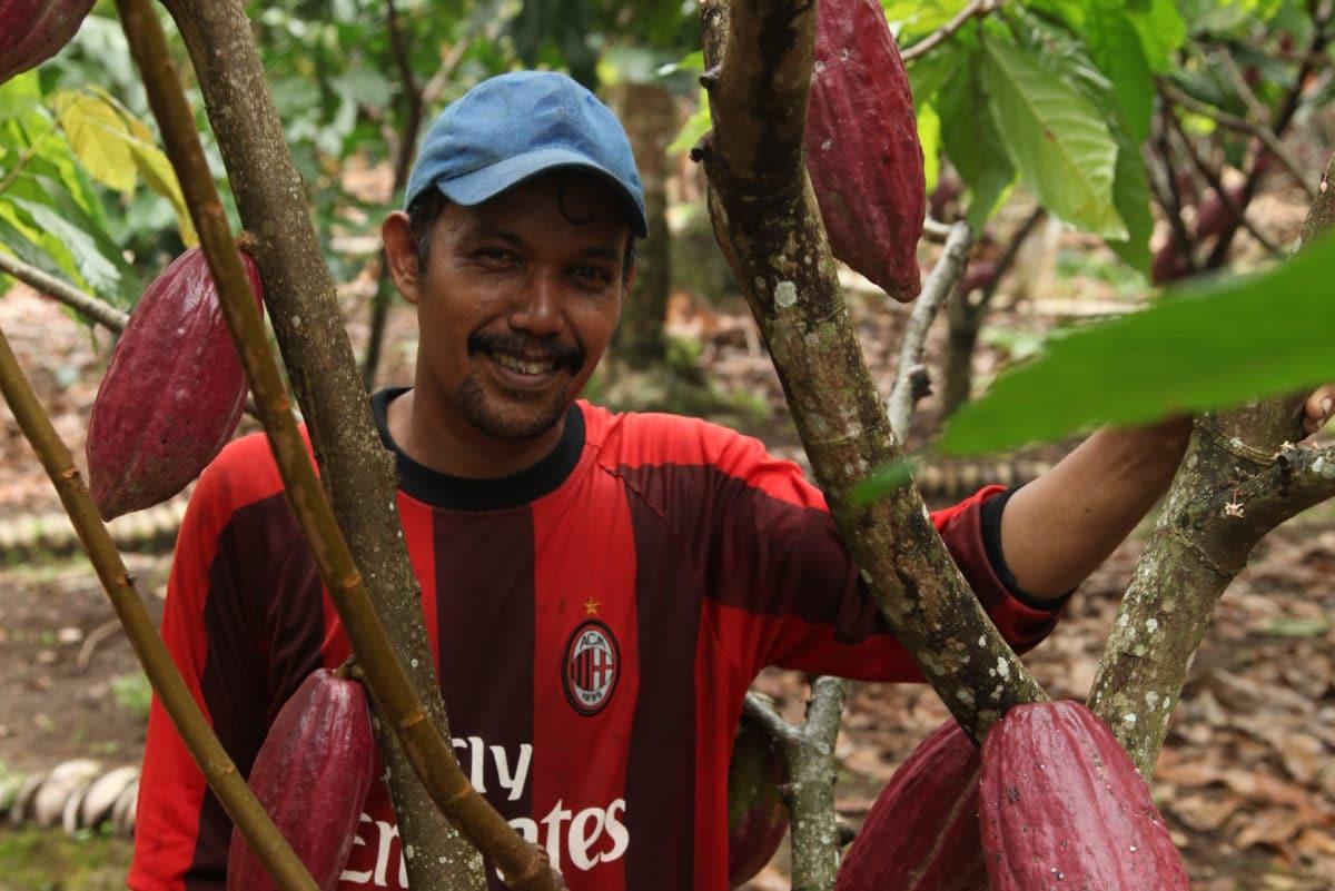 cocoa-farmer-Sumatra-3-e1559813936699